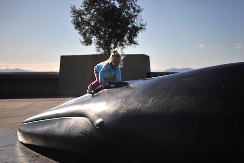 AB BG whale