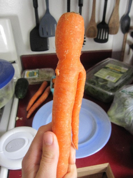 One Armed Carrot