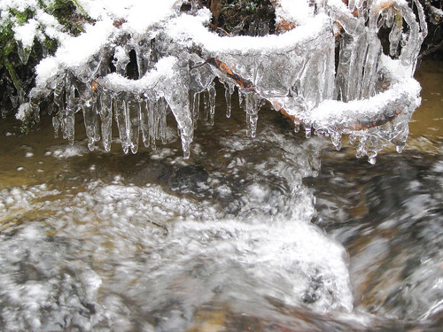 Ice in the Brook