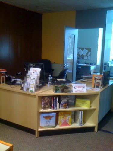 New Desk, Long View