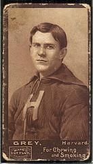 1894 Mayo Grey