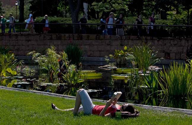 Student reading in the Harper Humanities Garden.