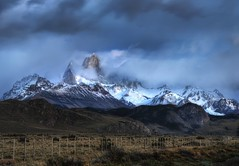 A View from the Ranch in Argentina and Guest H...