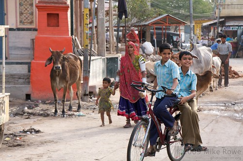 Life in Jojawar
