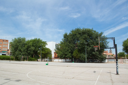 IES Alonso Quijano (XIII)