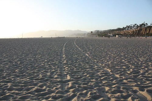 on santa monica's beach