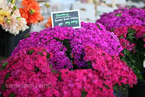 Flowers, San Francisco Ferry Building Marketplace