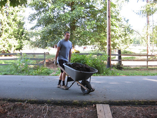 Wheeling manure