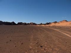 algérie 141