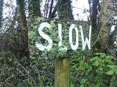 Slow Photo: BPG