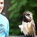 Woodland Park Zoo Seattle 069