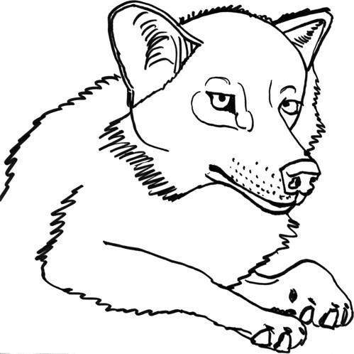 Explorations into wolfiness, part 4
