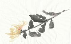 sumi-e_flower