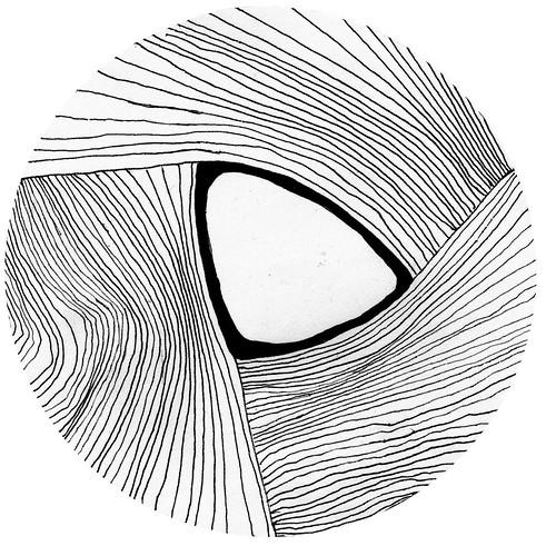 wood void