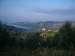 Morgennebel in Latium