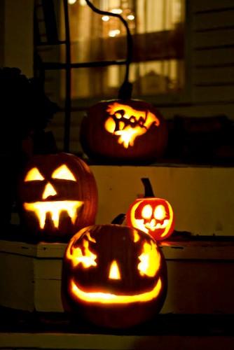 4Pumpkins
