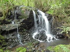 12ª Cachoeira - 1