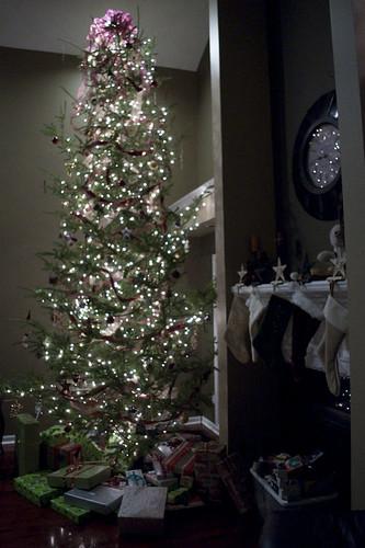 Christmas 2009_0032