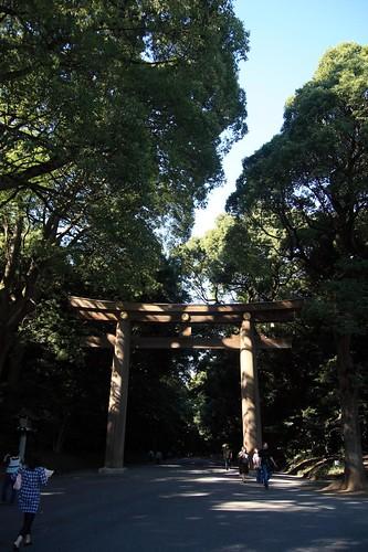 鳥居 / Torii