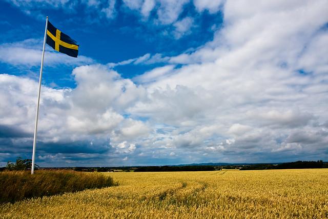 Flag countryside