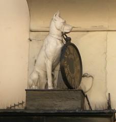 Dogge über Wirtshaustür