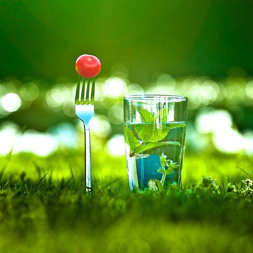 Grass / Bokeh / Photography por â–ºCubaGallery