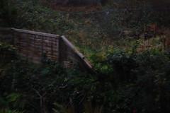 09 11 14_fence_0001