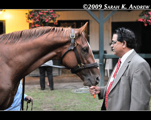 Victory Carrot for 2009 Travers Stakes Winner Summer Bird