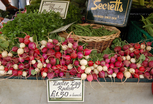 Secretts Easter Egg radishes