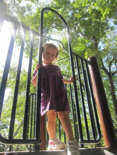 Zoo Playground