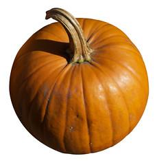 Free Pumpkin #1