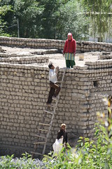 Mud bricks are not oven-fired before construction