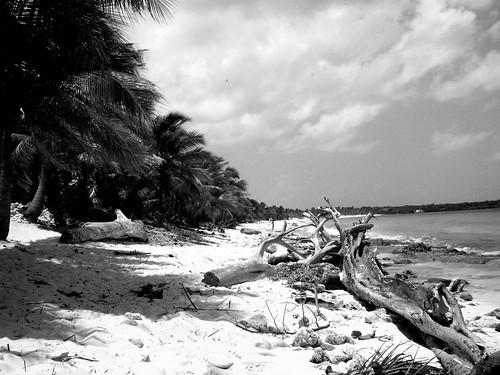 URB Punta Cana 089-2