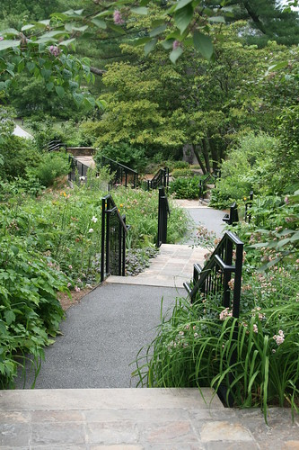 Steps to lower garden