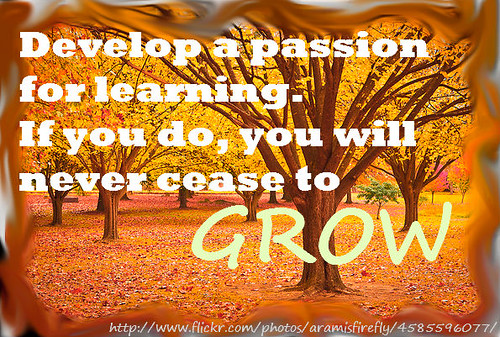 Never Cease to Grow