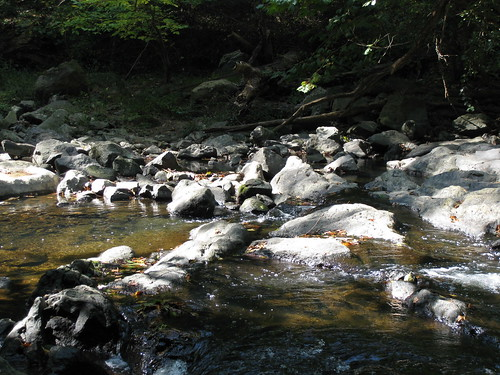 Bubbling creek