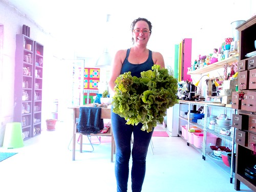 Alfaces de 2kgs!! / 2 kilos of lettuce!!