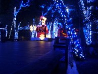 Cedar Point - Starlight Experience Winter