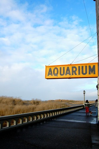 Outside of the aquarium in Seaside, OR