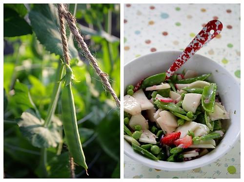 Peas and Salad