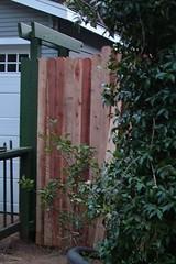 Arbor fence (in progress) Sunday night, July 5th