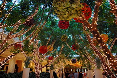 Twinkle light garden at the Wynn in Las Vegas