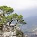 Ascent of Cerro Verde