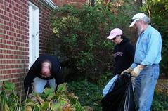Volunteers Cut Back Hostas