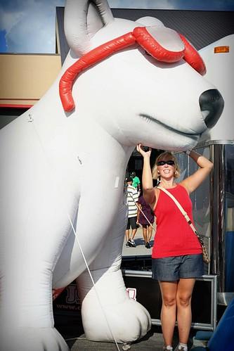 Kentucky State Fair: JUMP Dog Show