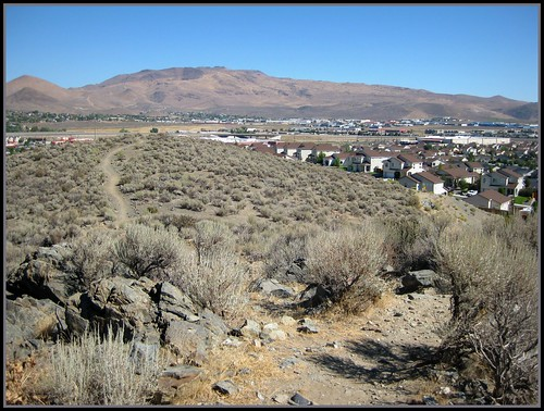 Lone Mountain Trail