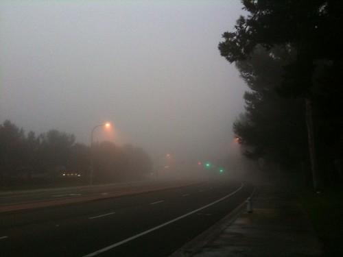 Fogbound in OC
