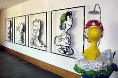 California - Santa Rosa: Charles M. Schulz Mus...