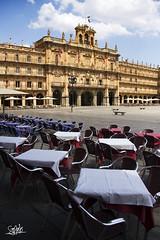 Plaza Mayor - Salamanca