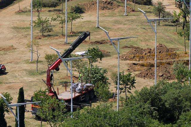 Entorno Futura Estación de La Sagrera - Retirada de árboles del Parc de Sant Martí - 25-05-11